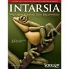 Intarsia Woodworking for Beginners - Kathy Wise 205780