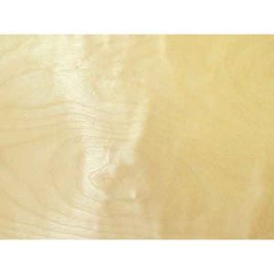 White Birch Rotary Cut Veneer 321026