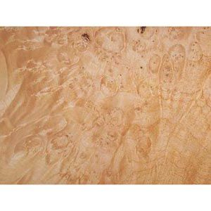 Maple Burl Veneer 321049
