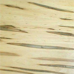 Ambrosia Maple Veneer 12 Sf Wood Veneer Supplier