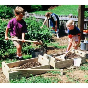 Planter Boxes And Garden Tools Downloadable Plan PB1