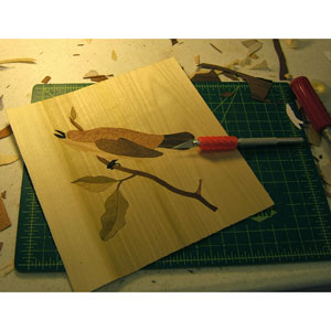 Marquetry in Depth with Jane Burke
