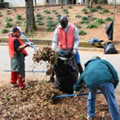 Edgewood Clean Up & Beautification Project