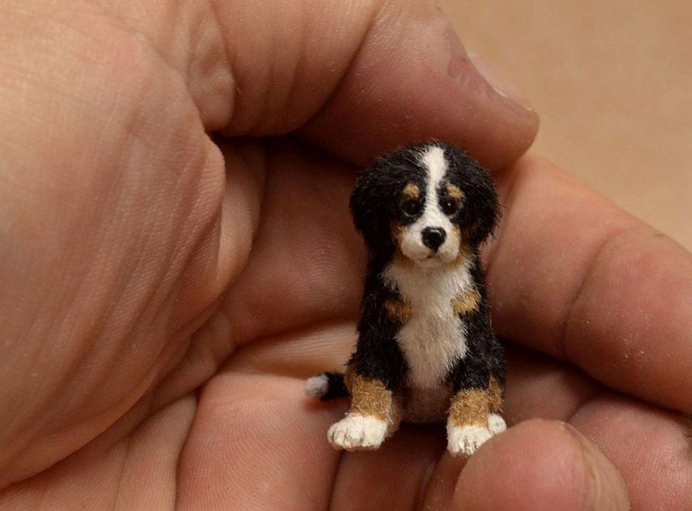 Carving A Bernese Mountain Dog Puppy Linda Master