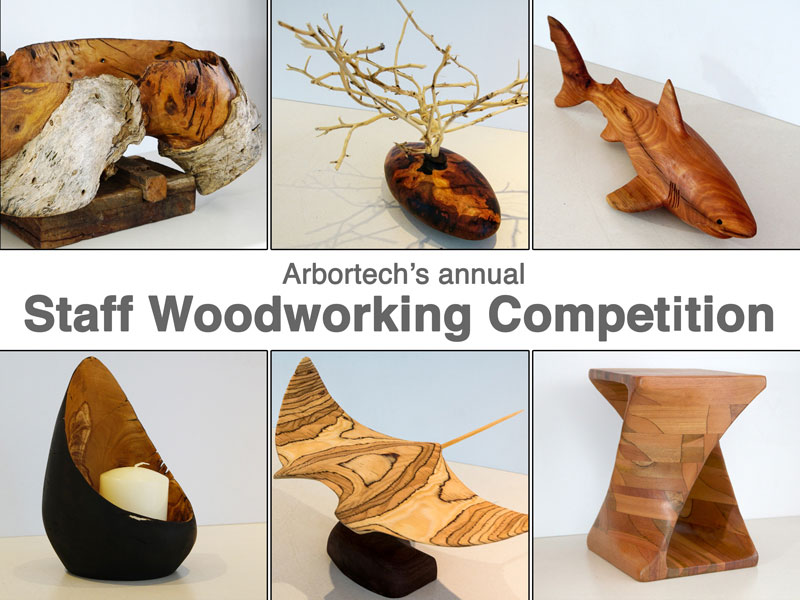 Carving Projects Arbortech Woodworking Competition 2016