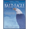 The Illustrated Bald Eagle - Denny Rogers 203653